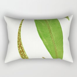Edward Joseph Lowe - Asplenium Rhizophyllum Rectangular Pillow
