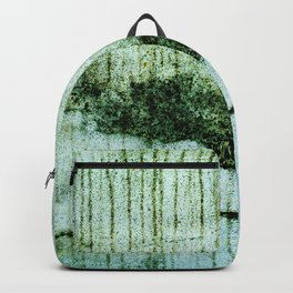Wall with a river view Backpack