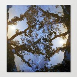 Sungazing Silhouette Canvas Print
