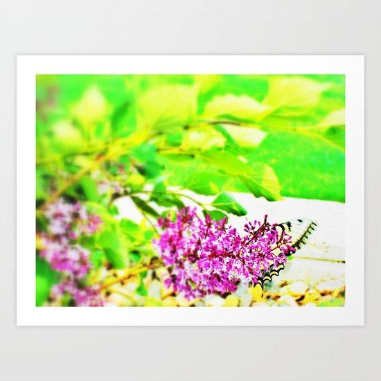 butterfly glory Art Print