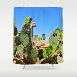 Mexico 41 Shower Curtain