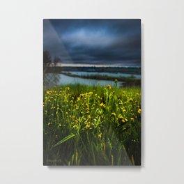 Rainy River Flowers Metal Print