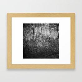 #84 Framed Art Print