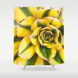 Plant member of the Cactus Shower Curtain
