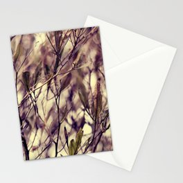 Patterns in my Winter Garden Stationery Cards