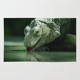 Drinking Iguana Rug