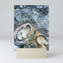 Florida Sandstone Pattern #1 Mini Art Print