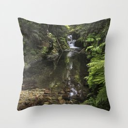 Double Falls  Quinault Rain Forest Throw Pillow