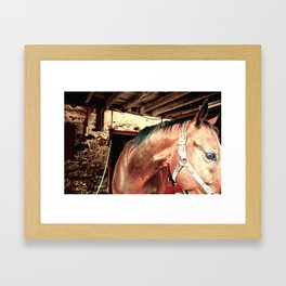 young ones Framed Art Print