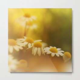 Wild and beautiful Metal Print