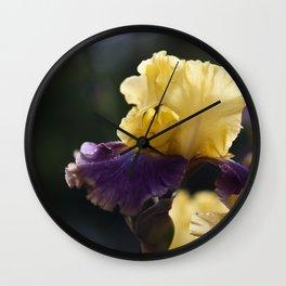 Purple and Yellow Springtime Iris Wall Clock