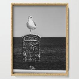 Seagull Takes A Break Serving Tray