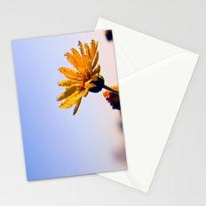 Morning Wash Stationery Cards