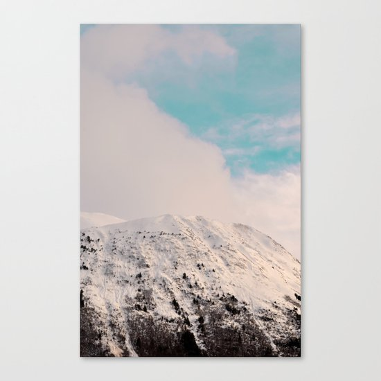 Black, White & Turquoise Winter Canvas Print