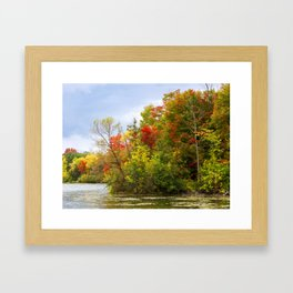 Leaning into Autumn Framed Art Print