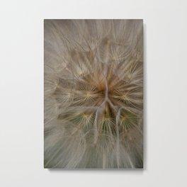 Weeds Metal Print