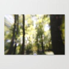 Embrace The Blur Canvas Print