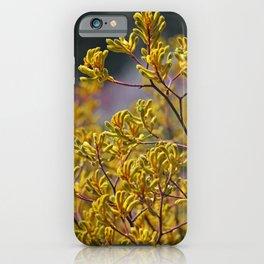Kangaroo Paw iPhone Case