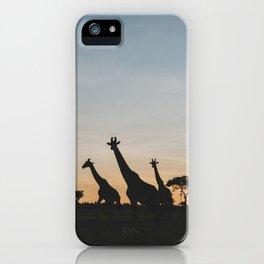 Masai Mara National Reserve IX iPhone Case