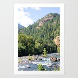 Elwha River, Olympic National Park, Washington Art Print