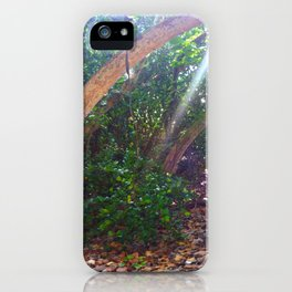 glance past iPhone Case