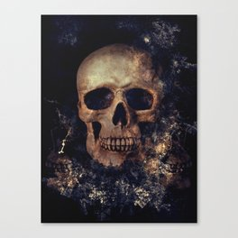 Our Mortal Coil Canvas Print