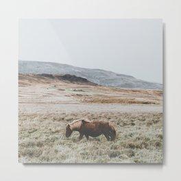 Hrútafjörður, Iceland II Metal Print