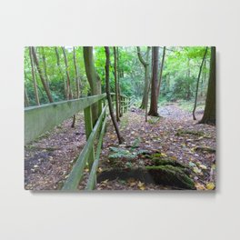 Boundary to the woods Metal Print