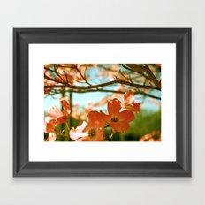 A Spring Day Framed Art Print