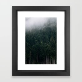 Mystic Pines - A Forest in the Fog Framed Art Print