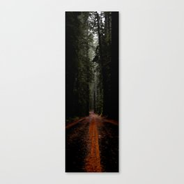 Avenue of the Giants - Vertical Panarama Canvas Print