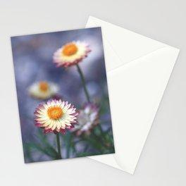 Everlastings Stationery Cards