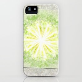 Triptychs Unveiled Flower  ID:16165-114729-45271 iPhone Case