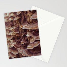 Tree Mushrooms Stationery Cards