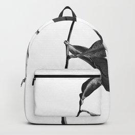 WABI SABI Dead Leaves. Backpack