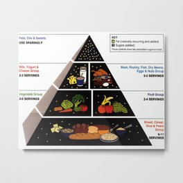 Food Pyramid  Metal Print