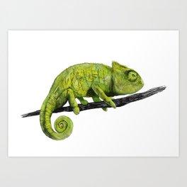 Nice Chameleon Art Print