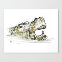 hippo Canvas Prints featuring Hippo by Ursula Rodgers