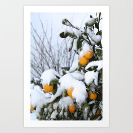 Lemon Snow Art Print