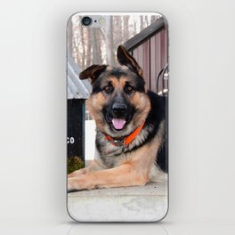 Tobacco Doggo iPhone Skin