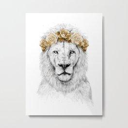 Festival lion (color version) Metal Print
