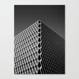 frequency.mono Canvas Print