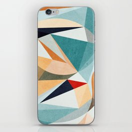Time for Everything iPhone Skin