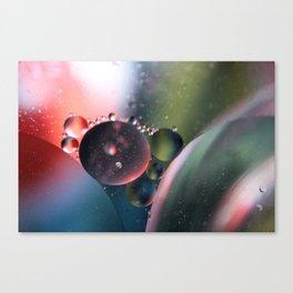 MOW17 Canvas Print