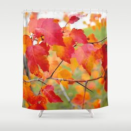 Hawthorn in Fall Color Shower Curtain