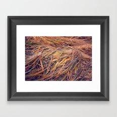 autumn grass Framed Art Print