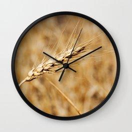 Wheat Stalk Photography Print Wall Clock