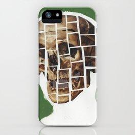 Skull-Saic iPhone Case