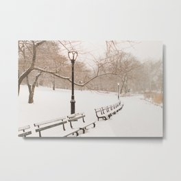 Snowing in Central Park Metal Print