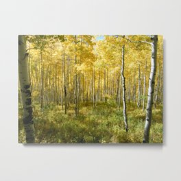 Yellow Aspens II Metal Print